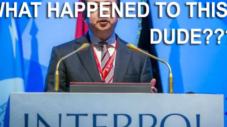 Strange case of Interpol chief disappearing in the mist