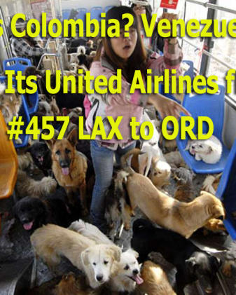 United Airlines shit hole